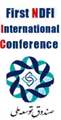 First NDFI International Conference